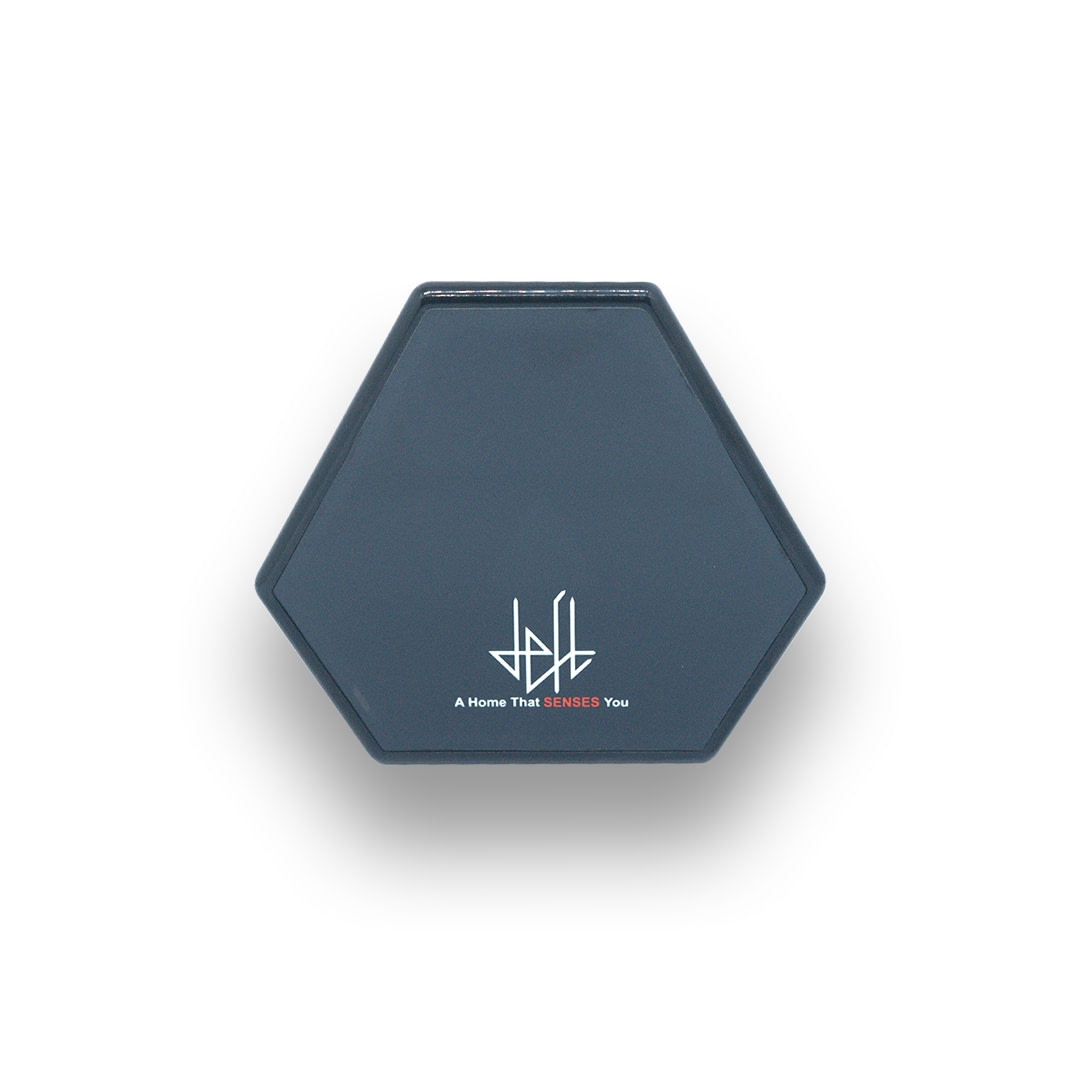 Master Hub - The Brain of your Smart Home